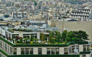 Bonus verde 2018: un incentivo a favore del verde urbano